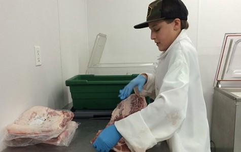 Cole Henry, An Aspiring Butcher