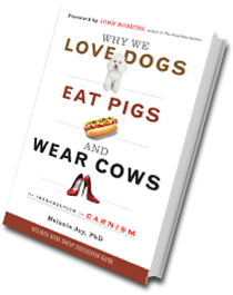 Why we love dogs_book_cover